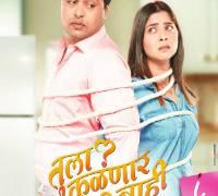 Tula Kalnnaar Nahi Marathi Film Poster